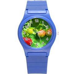 Strawberry  Plastic Sport Watch (small)