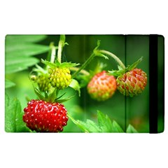 Strawberry  Apple iPad 2 Flip Case