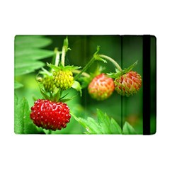 Strawberry  Apple iPad Mini Flip Case