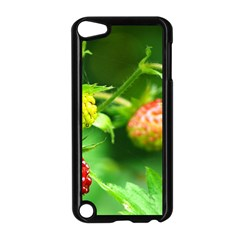 Strawberry  Apple iPod Touch 5 Case (Black)