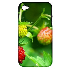 Strawberry  Apple iPhone 4/4S Hardshell Case (PC+Silicone)