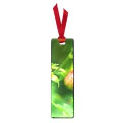 Strawberry  Small Bookmark