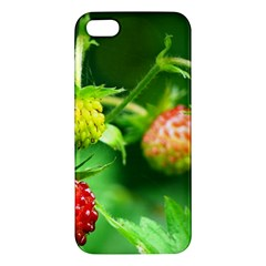 Strawberry  Iphone 5 Premium Hardshell Case