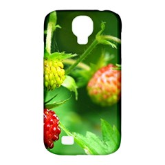 Strawberry  Samsung Galaxy S4 Classic Hardshell Case (pc+silicone)