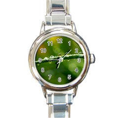 Waterdrops Round Italian Charm Watch