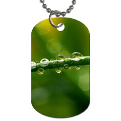 Waterdrops Dog Tag (Two-sided)