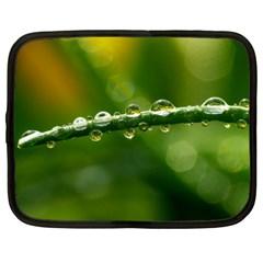 Waterdrops Netbook Case (xl)