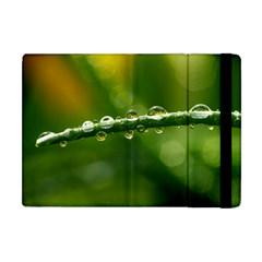 Waterdrops Apple Ipad Mini Flip Case