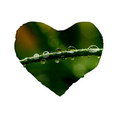 Waterdrops 16  Premium Heart Shape Cushion