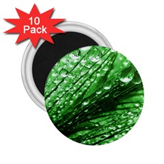 Waterdrops 2 25  Button Magnet (10 Pack)