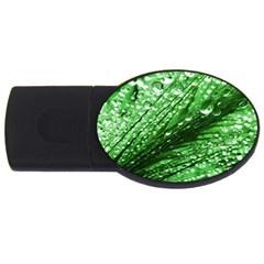 Waterdrops 4GB USB Flash Drive (Oval)