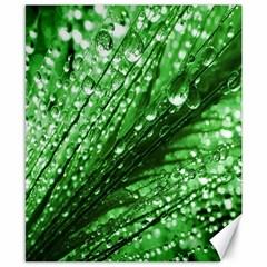 Waterdrops Canvas 8  x 10  (Unframed)