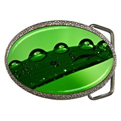 Waterdrops Belt Buckle (oval)