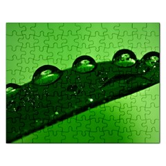 Waterdrops Jigsaw Puzzle (Rectangle)