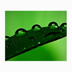 Waterdrops Glasses Cloth (Small)