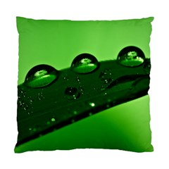 Waterdrops Cushion Case (Single Sided)