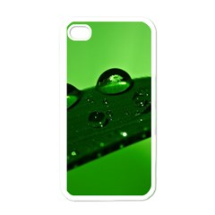 Waterdrops Apple iPhone 4 Case (White)