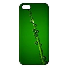 Waterdrops iPhone 5 Premium Hardshell Case
