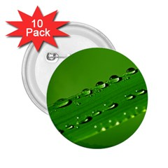 Waterdrops 2.25  Button (10 pack)