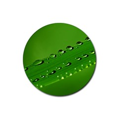 Waterdrops Drink Coaster (Round)