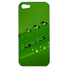 Waterdrops Apple iPhone 5 Hardshell Case