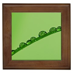 Waterdrops Framed Ceramic Tile