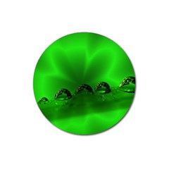 Drops Magnet 3  (round)