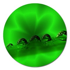 Drops Magnet 5  (Round)