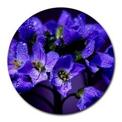 Cuckoo Flower 8  Mouse Pad (Round)