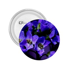 Cuckoo Flower 2.25  Button