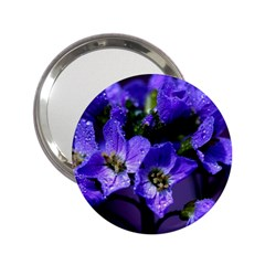 Cuckoo Flower Handbag Mirror (2 25 )