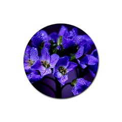 Cuckoo Flower Drink Coaster (round)