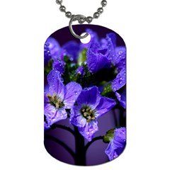 Cuckoo Flower Dog Tag (two Sided)