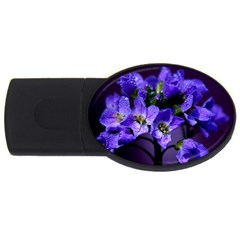 Cuckoo Flower 2gb Usb Flash Drive (oval)