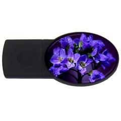 Cuckoo Flower 4gb Usb Flash Drive (oval)