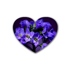 Cuckoo Flower Drink Coasters 4 Pack (Heart)