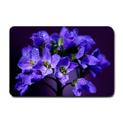 Cuckoo Flower Small Door Mat