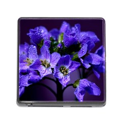 Cuckoo Flower Memory Card Reader With Storage (square)