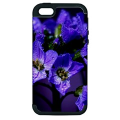 Cuckoo Flower Apple iPhone 5 Hardshell Case (PC+Silicone)