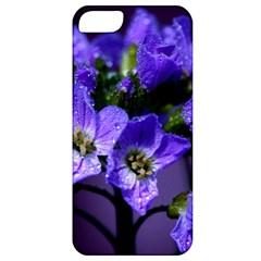 Cuckoo Flower Apple iPhone 5 Classic Hardshell Case