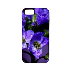 Cuckoo Flower Apple iPhone 5 Classic Hardshell Case (PC+Silicone)