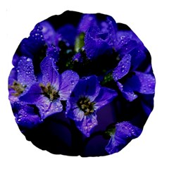 Cuckoo Flower 18  Premium Round Cushion