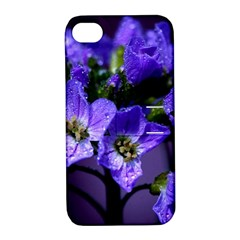 Cuckoo Flower Apple iPhone 4/4S Hardshell Case with Stand