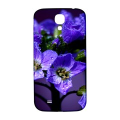 Cuckoo Flower Samsung Galaxy S4 I9500/I9505  Hardshell Back Case