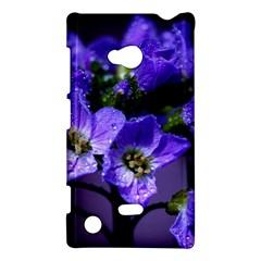 Cuckoo Flower Nokia Lumia 720 Hardshell Case