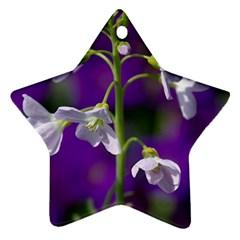 Cuckoo Flower Star Ornament