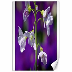 Cuckoo Flower Canvas 20  X 30  (unframed)