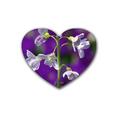 Cuckoo Flower Drink Coasters (Heart)