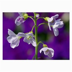 Cuckoo Flower Glasses Cloth (Large, Two Sided)