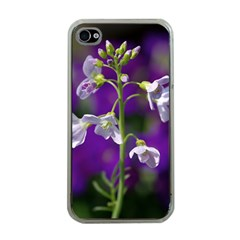 Cuckoo Flower Apple iPhone 4 Case (Clear)